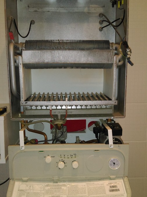 Ремонт газового котла Ferroli Domina F 30 E