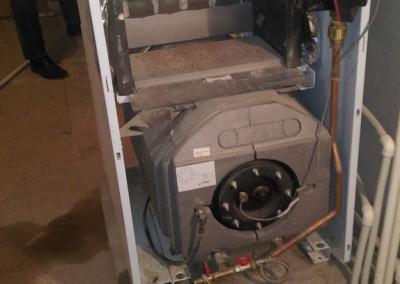 Техническое обслуживание газового напольного котла Protherm medved 50 KLZ