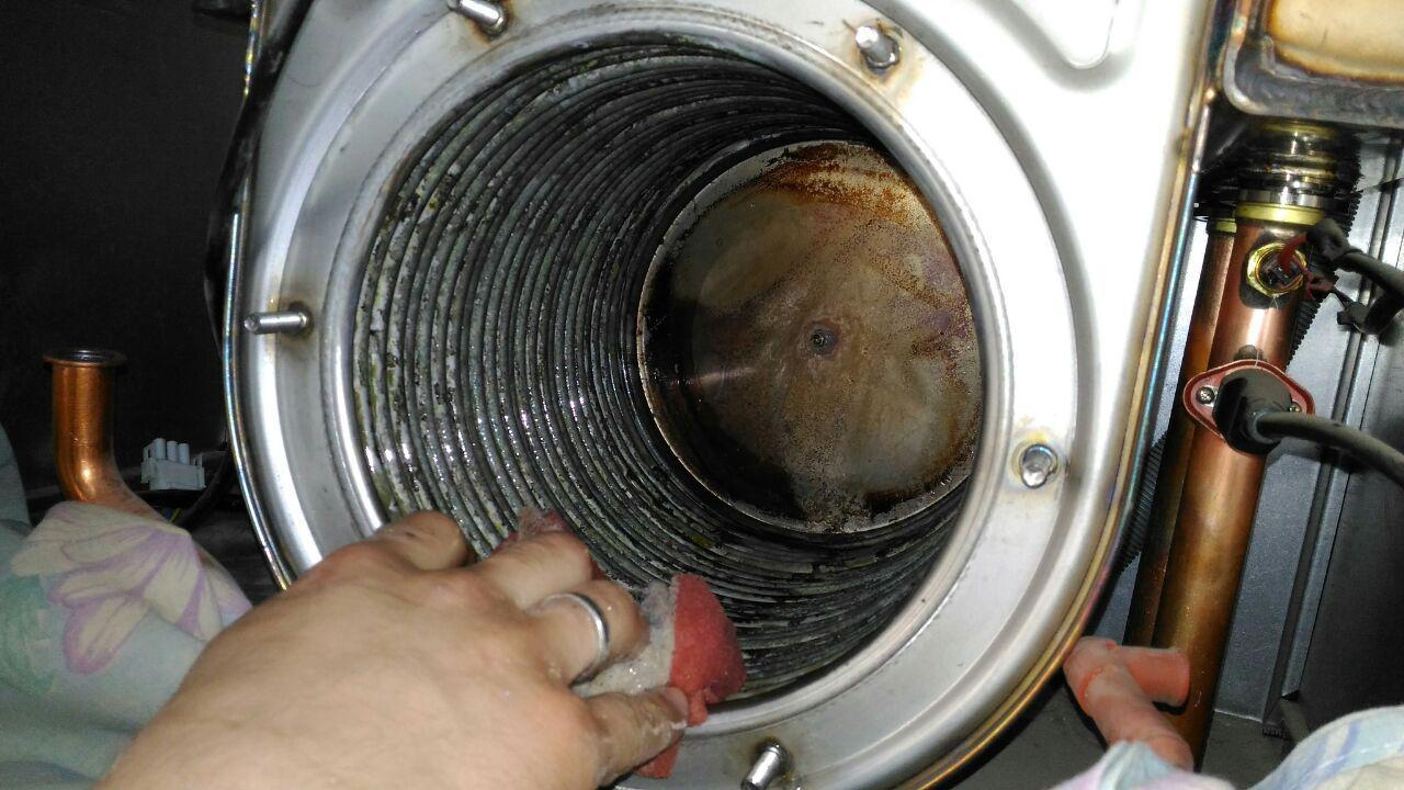 Чистка теплообменника котлов baxi как почистить теплообменник двухконтурного котла baxi